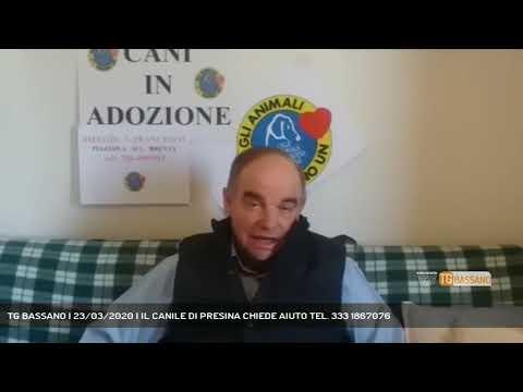 TG BASSANO | 23/03/2020 | IL CANILE DI PRESINA CHIEDE AIUTO TEL. 333 1867076