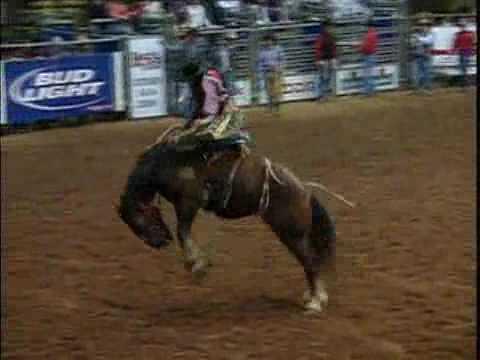 Saddle Bronc Riding | HRS Rodeo