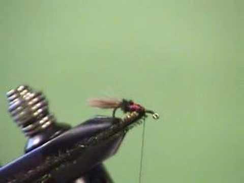 Royal Coachman Wet Fly w/ Rolled Hen Wing