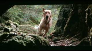 Video Far From Home: The Adventures of Yellow Dog (1995) theatrical trailer MP3, 3GP, MP4, WEBM, AVI, FLV Agustus 2018