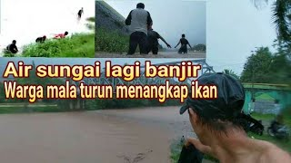 Video Kaget tiba2 banyak warga    ma kaja ikan monster di saat air sungai lagi banjir MP3, 3GP, MP4, WEBM, AVI, FLV Desember 2018