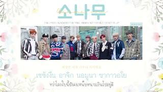 Video [Thaisub] Wanna One (워너원) - 소나무 (PINE TREE) | Nungxoxo MP3, 3GP, MP4, WEBM, AVI, FLV Juni 2019