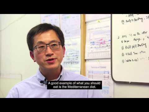 Professor Stephen (Cheng-en) Yu, PhD - Healthy diet