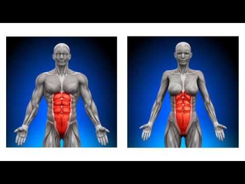 23 Seconds Waist Shrinking Exercise