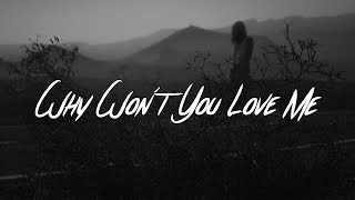 5 Seconds Of Summer - Why Won't You Love Me (Lyrics)