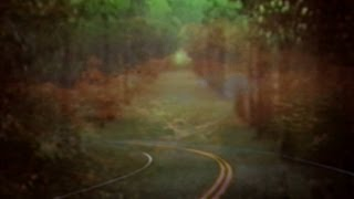 Bibio - Dye The Water Green (Official Music Video) - YouTube