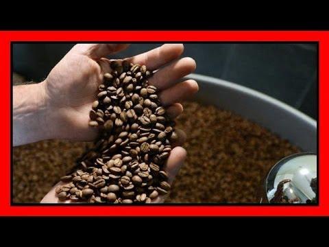 tutti i modi per usare i fondi del caffè!