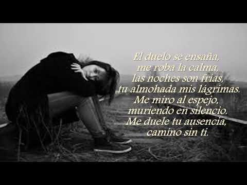 Poemas cortos - EN EL FANGO DEL DOLOR  [CHABELY]