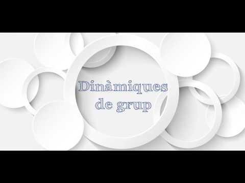 Dinàmiques de grup