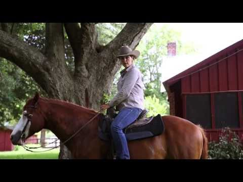Diamond D Ranch Horseback Riding