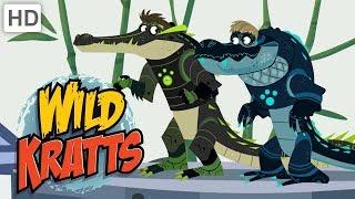 Video Wild Kratts 🐊 Alligators vs. Crocodiles! | Kids Videos MP3, 3GP, MP4, WEBM, AVI, FLV Maret 2019
