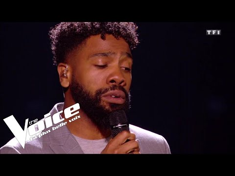 Starmania (Le monde est stone) | Hobbs | The Voice 2018 | Lives