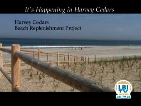 It's Happening in Harvey Cedars