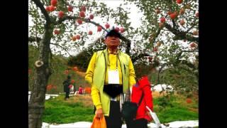 Chungju-si South Korea  City pictures : 가을 역사 문학기행 및 사과 따기 체험/2016.11.5.(토