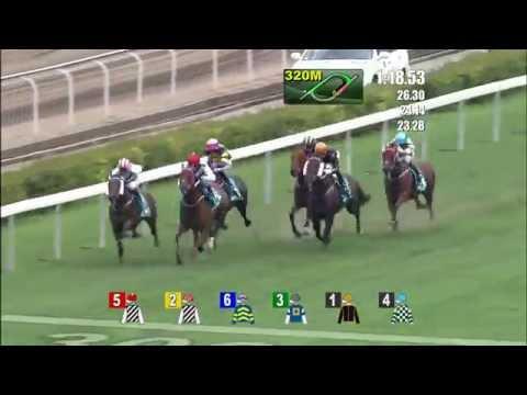 2015/5/3(日) 香港チャンピオンズマイル(G1)