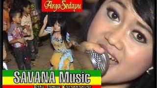 Gajah Kupu-Kupu Savana Dangdut Reggae