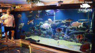Video Big Tanks, Big Fish, and Big Rich - Touring Ohio Fish Rescue MP3, 3GP, MP4, WEBM, AVI, FLV Februari 2019