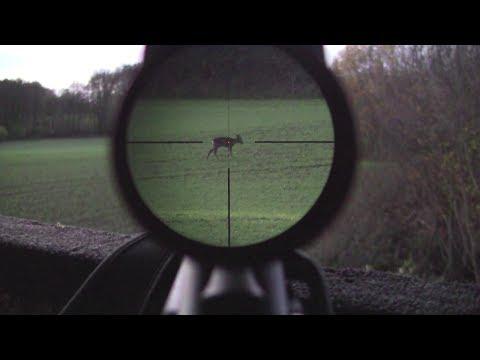 weibliches - Hier ein Video zur Jagd auf weibliches Rehwild im November. Bei Sonnenschein ist das Rehwild schon früh am Nachmittag unterwegs und man sollte im Feld gegen ...