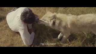 Nonton Wolf Totem  2015  International Trailer Film Subtitle Indonesia Streaming Movie Download