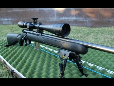 Review of the Savage Model 93 in 17 HMR
