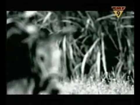 Tekst piosenki Apollo 440 - Ain't Talkin' `Bout Dub po polsku