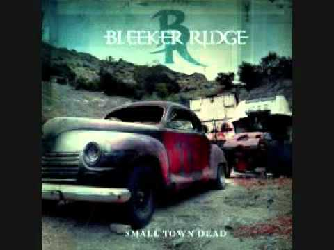 liked - I DO NOT OWN THIS SONG You Would've Like It by Canadian Band Bleeker Ridge Lyrics : You would've liked it you would've liked it you would've loved to see thi...