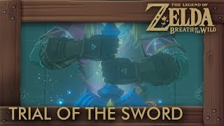 Zelda Breath of the Wild - Trial of the Sword (Final Trials). This video shows you a walkthrough of the Trial of the Sword (final) and how to upgrade the Master Sword.►ZELDA: BREATH OF THE WILD - WALKTHROUGH PLAYLIST: https://goo.gl/YLpbte►Twitter: https://twitter.com/beardbaer►Game Informations:▪ Title: The Legend of Zelda - Breath of the Wild▪ Developer: Nintendo▪ Publisher: Nintendo▪ Platform: Switch, Wii U▪ Genre: Action-adventure▪ Playtime: 25+ hours