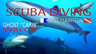 Welcome to our new underwater Scuba Diving Series. Finally we now back exploring the other 70% of the underwater part of Sint...