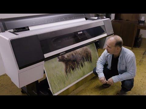 Epson SureColor P9000 | Nature's Best Photography Exhibition