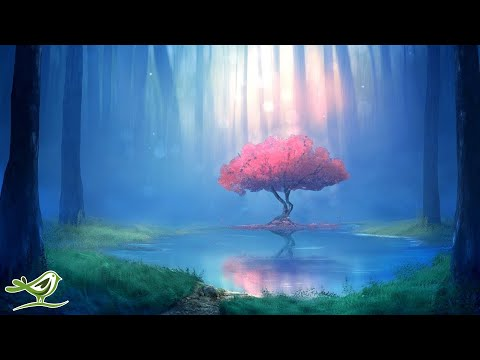 Deep Relaxing Music - Meditation Music, Sleep Music, Ambient Music