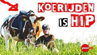 Jantien uit Middelburg rijdt koe I Puntuit