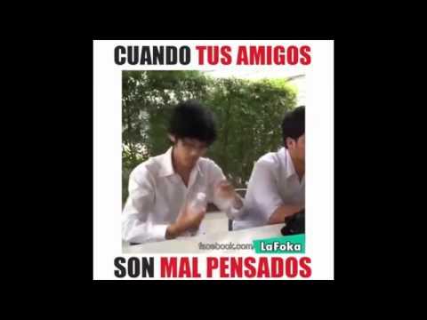 Video Cuando tus amigos son malpensados download in MP3, 3GP, MP4, WEBM, AVI, FLV January 2017