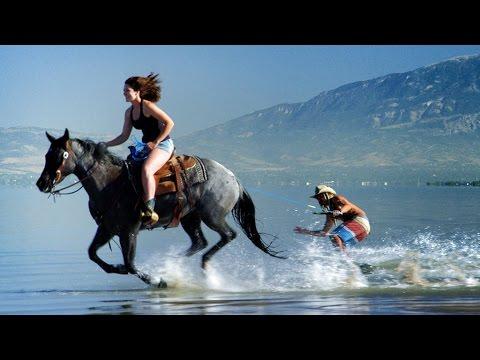 �gy �tv�zd a lovagl�st �s a sz�rf�l�st