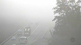 Dirigir sob neblina requer atenção redobrada dos motoristas