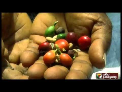 Magalirum-Makkalaatchiyum-Promo-08-04-2016-Puthiya-Thalaimurai-TV