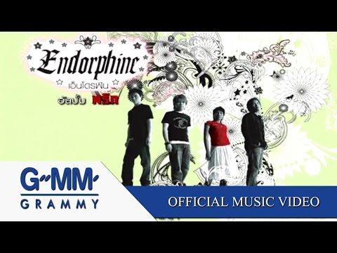เพื่อนสนิท - Endorphine【OFFICIAL MV】