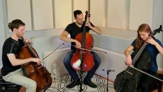 Bach Cello Suite 6, Sarabande, in D Major, arranged for three cellos and performed live by Break of Reality.LISTEN on Spotify: http://spoti.fi/2p530jyDOWNLOAD on iTunes: http://apple.co/25uCVGv /// EXPAND for more info!LIKE US on Facebook: http://www.facebook.com/breakofrealityInstagram: http://www.instagram.com/breakofrealitybandTwitter: http://www.twitter.com/breakofrealityMembers:Patrick Laird, celloTavi Ungerleider, celloCicely Parnas, celloIvan Trevino, percussion (not featured in this performance)Special thanks to former Break of Reality member, Martin Torch-Ishii, for his incredible arrangement of this Sarabande.Break of Reality plays exclusively on Pirastro Strings (http://www.pirastro.com).