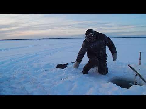 рыбалка на севере на язя