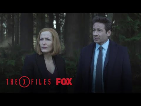 Mulder & Scully Investigate The Playground | Season 11 Ep. 8 | THE X-FILES