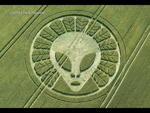 見證UFO製作麥田圈