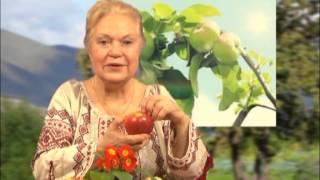 Первоцвіт, банан, яблуко та ківі - рослини