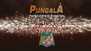 SPOT  CARNAVAL GADPR.  PUNGALÁ 2017