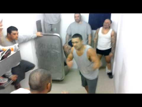 聽說紐西蘭監獄會上演「鬥陣俱樂部」場景時,沒人相信…直到看完這段流出來的影片!