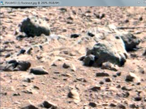 Mars Anomalies ◄ NASA Image Reveals Skeletal Horse Remains On Mars★★★