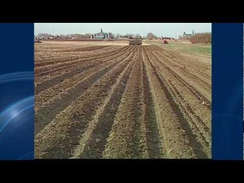 Canadian Prairies Drought