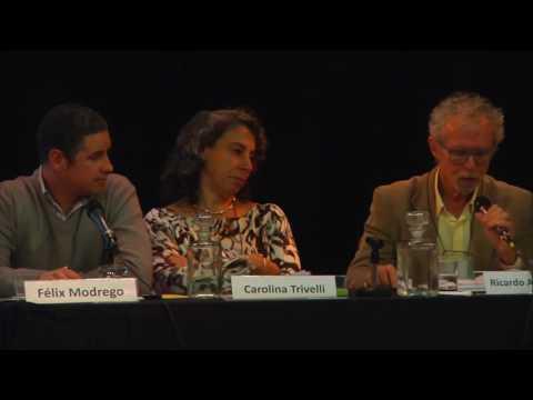 Seminario Alexander Schejtman (bloque 5) / Discusión Panel Desarrollo Territorial