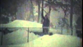 Ronkonkoma (NY) United States  City pictures : Clips of 1978 Blizzard Ronkonkoma NY