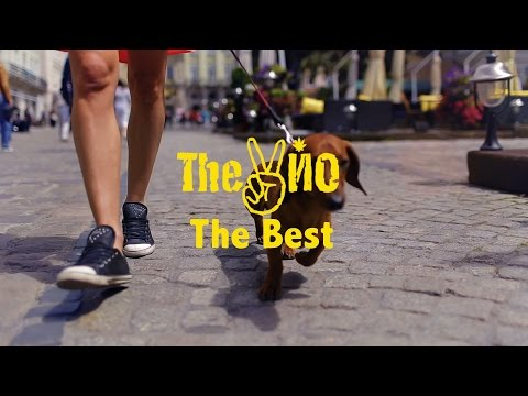 The ВЙО - The Best (official)