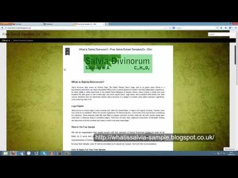 Salvia Divinorum Free Samples[Extract][5x/10x/20x]