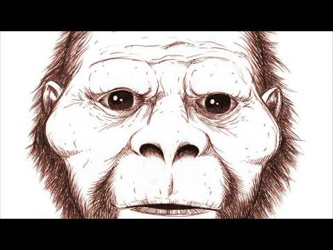 """EYE to EYE with a MONSTER!! Eyewitness SKETCH!"" Dogman Sasquatch Encounters Episode:45 Crypto PTSD"